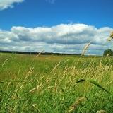 mordovia landscape